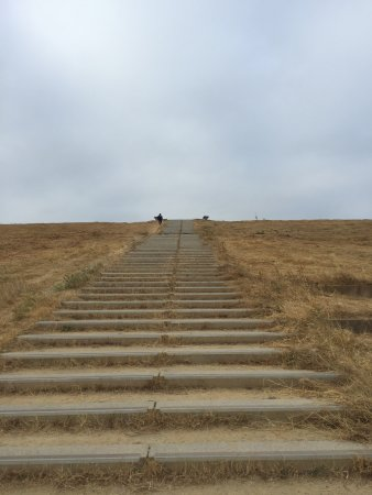 San Mateo, CA: Steps to Hilltop
