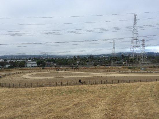 San Mateo, CA: View of Dog Park