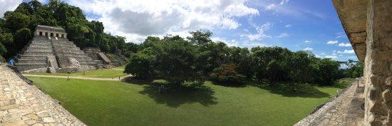 National Park of Palenque: View form the top of El Palacio