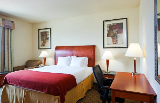 Fairfield, تكساس: King Bed Guest Room
