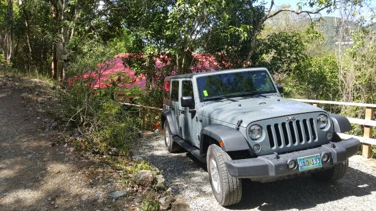 Perfect Customer Service Review Of Just Sun Jeeps St