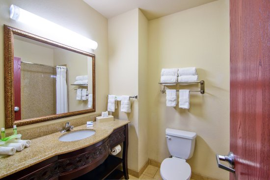 Terrell, TX: Guest Bathroom
