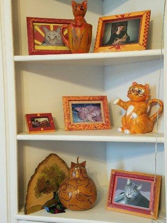 Orange Cat Cafe: 20160707_124611_large.jpg