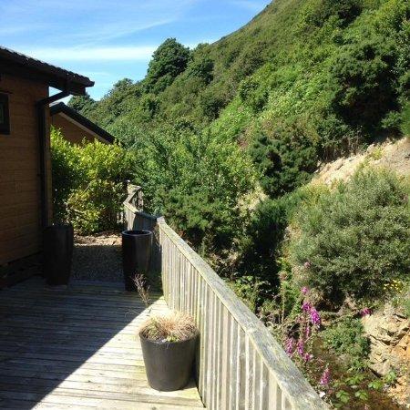 Gwalia Falls Retreat: View from terrace