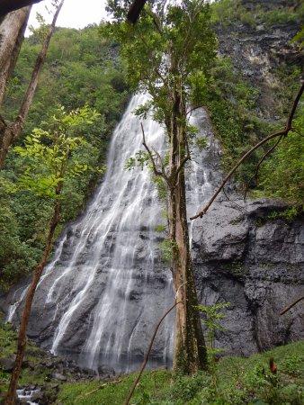 Afareaitu, بولينيزيا الفرنسية: View from the final rock -- It gets better