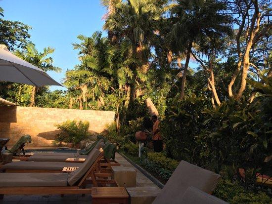 Bedarra Beach Inn: Fabulous spot!