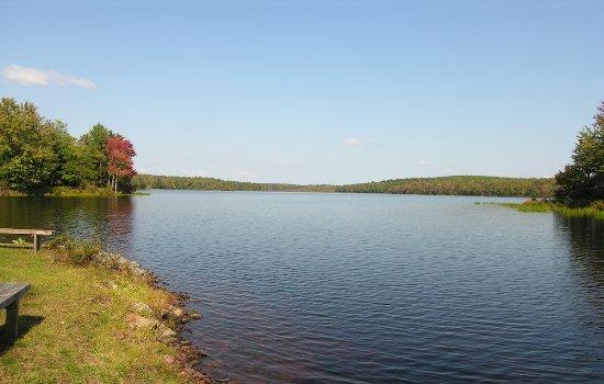Inn at Lake Joseph: Lake Views