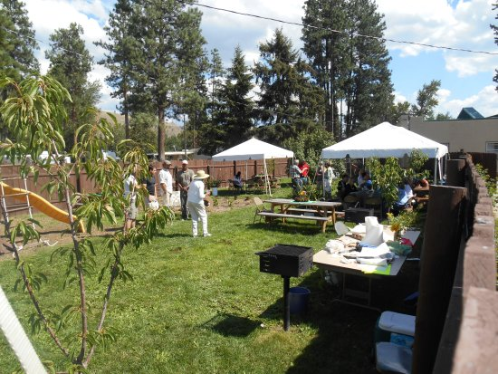 Mountain Spirit Inn: Reunion held in the private back yard