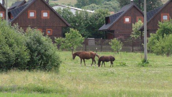 Malatiny, Slovakia: Magura village