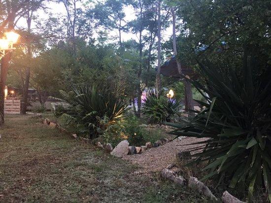 Canamares, Spain: nuestro jardin