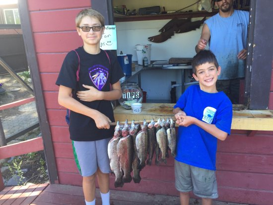 Tahoe Trout Farm: photo2.jpg