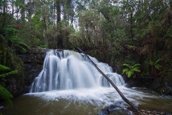 Lilydale falls in July