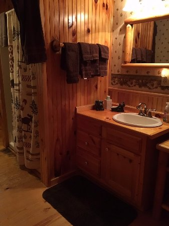 Schroon Lake Bed and Breakfast: Shower (no bath)