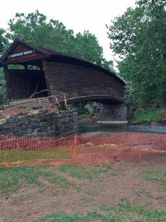 โควิงตัน, เวอร์จิเนีย: picture of the bridge