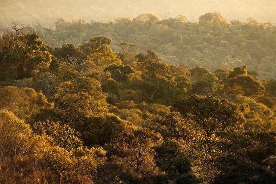 San Sebastian de la Selva: Una vista aerea de la reserva