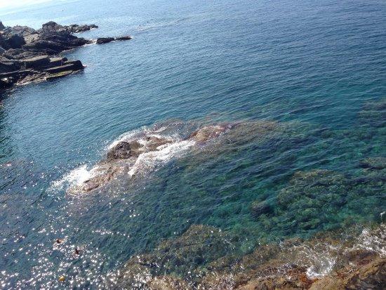 Agriturismo Le Pale: В Больяско чистейшее море!