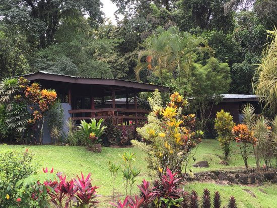 Chachagua, Коста-Рика: Garden