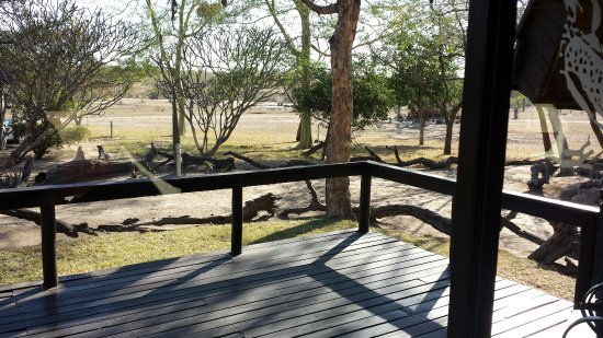 Nkorho Bush Lodge: 20160706_091526_large.jpg