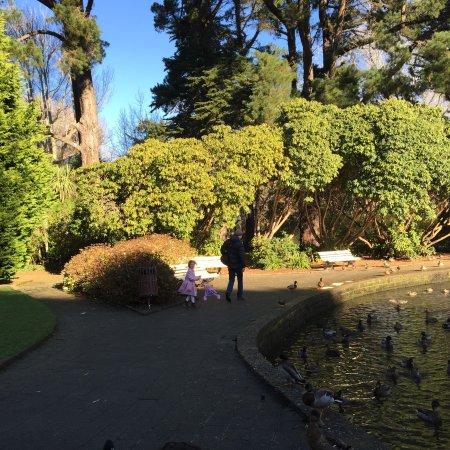 Инверкаргилль, Новая Зеландия: photo0.jpg