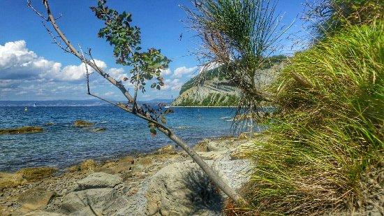 Nature Park Strunjan