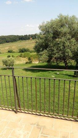 Azienda Agricola Trequanda: Guarda che bello!