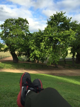 Constantia, Sudáfrica: Drunk. Slept at the lawn waiting for my bus
