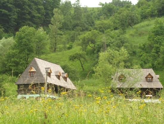 Amizadil House Maramures