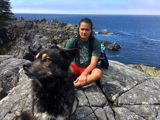Jamie's Whaling Station and Adventure Centres : alpha dog