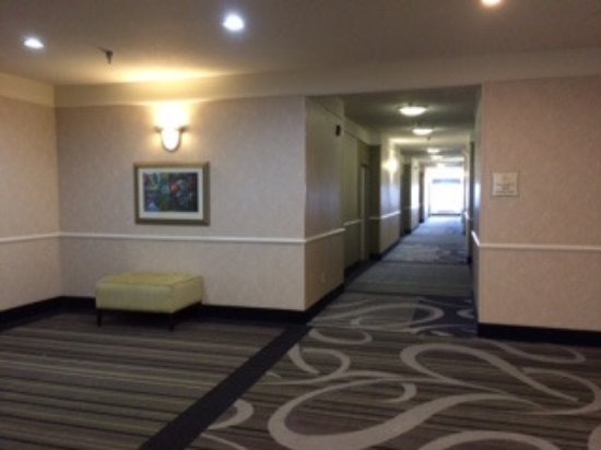 La Quinta Inn & Suites Roswell: clean, updated hallway
