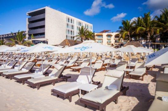 Kool Beach Club Camastros En La Playa