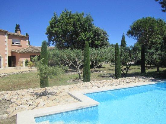 Graveson, France : la piscine et les oliviers
