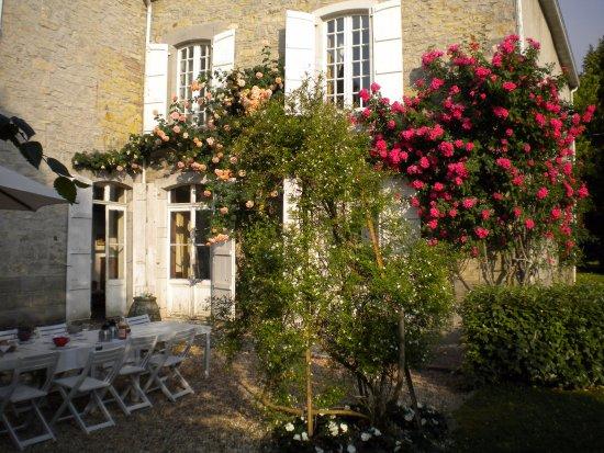 Maison Darthezenea : les petits déjeuners dans le jardin