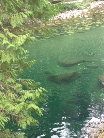 Nanaimo, Canadá: photo2.jpg