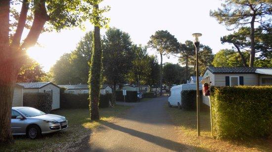 Camping Le Bois dAmour  Foto van Camping Le Bois dAmour