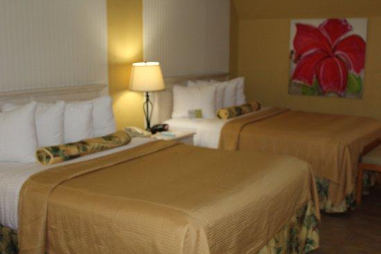 BEST WESTERN Hibiscus Motel 이미지
