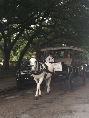 Royal Carriages