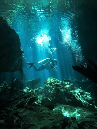 Luum ha Divers: Truly amazing! My first cenote dive at 61 years young! Thanks Alfredo!