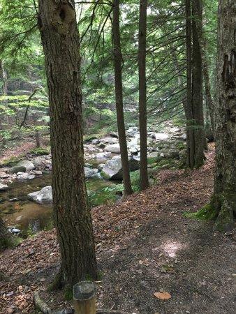 Lost River Valley Campground: photo3.jpg