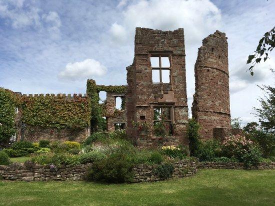 Wilton Castle: photo2.jpg