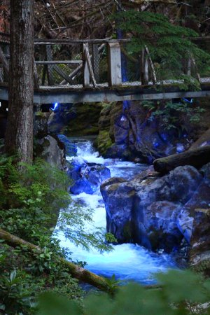 North Cascades Highway: Gorge Creek falls lit up at night