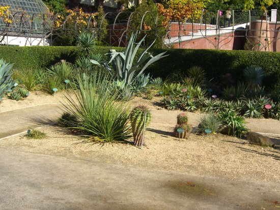 outside garden picture of royal botanic garden real jardin botanico madrid tripadvisor