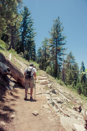 Switchback along the Little Baldy Trail in Sequoia National Park