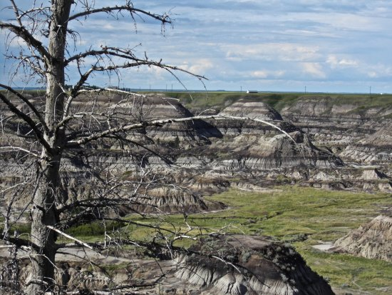 Horsethief Canyon : Just one of many views
