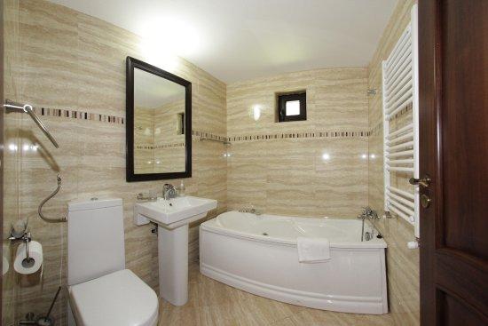 Paltinis, Roemenië: Bathroom2