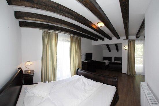 Paltinis, Rumania: Family room
