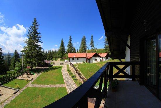 Paltinis, Rumania: View