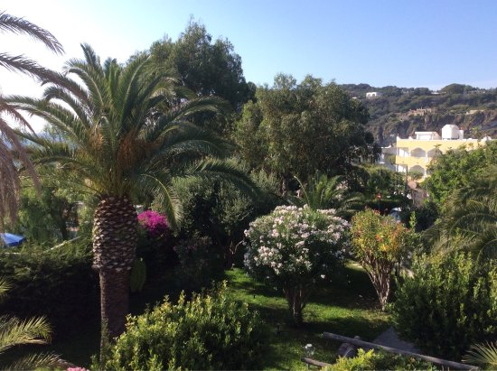 Hotel Terme Tritone: photo3.jpg