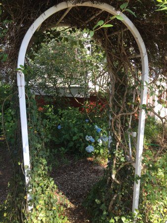 Abbington Green Bed and Breakfast Inn: part of the front yard's Secret Garden