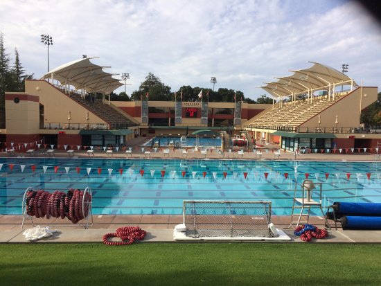 Homecoming 2016 Picture Of Stanford University Palo Alto Tripadvisor