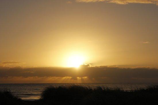 Moore Park Beach Φωτογραφία